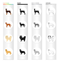 doberman beagle pomeranian and other web icon vector image