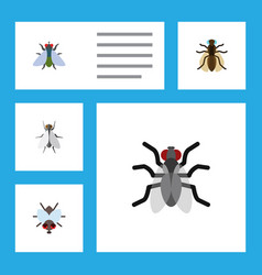 Flat icon fly set of fly mosquito gnat and other vector