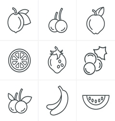 Line Icons Style Fruit Icons Set Design vector image