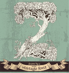 Magic grunge forest hand drawn by vintage font - Z vector image