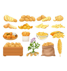 Potato products icons se vector