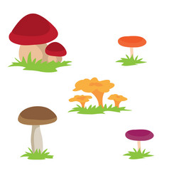set different mushrooms isolated object on vector image