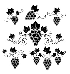 Winery design elements set vector image