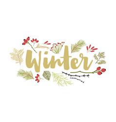 Winter lettering handwritten with cursive vector