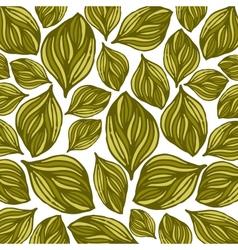 Flower background Floral card vector image vector image