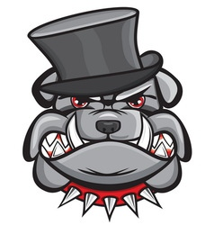 Angry bulldog head with hat vector image vector image