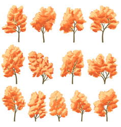 set of deciduous trees in autumn vector image