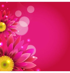 Pink Background With Gerbers vector image vector image