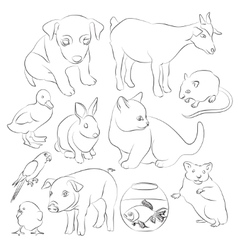 Animals pets icons set vector image