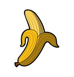 banana fresh fruit icon vector image