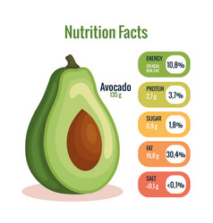 Fresh avocado with nutrition facts vector