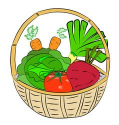 Fresh vegetables lie in the basket vector