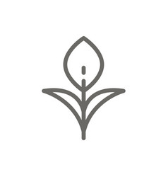 growth symbol icon spiritual concept vector image