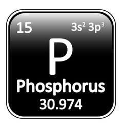 Periodic table element phosphorus icon vector