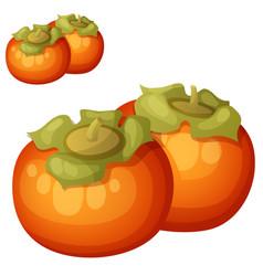 Persimmon fruit cartoon icon isolated vector