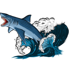 shark with open mouth in sea flat vector image