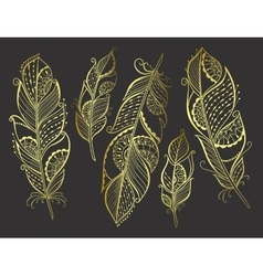 Zentangle hand drawn gold stylized feathers vector