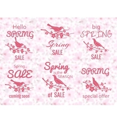 Spring sale labels with cherry blossom background vector image vector image