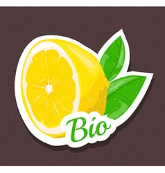 Bio lemon tag vector image vector image