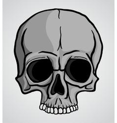 Human Skull vector image vector image