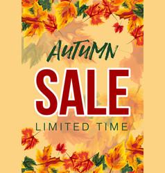 bright design of autumn sale poster vector image