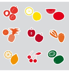 color fruits and half fruits stickers eps10 vector image