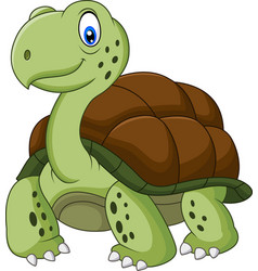 funny turtle cartoon vector image