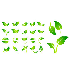 green vegan label or natural badges product vector image