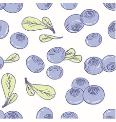 Hand drawn seamless pattern with blueberry vector
