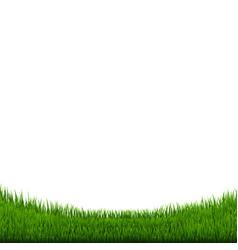 green grass border vector image vector image