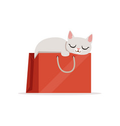 Adorable white cat sleeping in a red shopping bag vector
