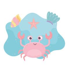 Crab starfish and shell life cartoon under sea vector