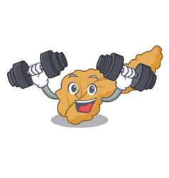 Fitness pancreas character cartoon style vector