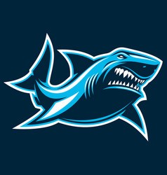 great white ferocious shark vector image