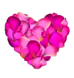 Heart from Rose Petals vector image