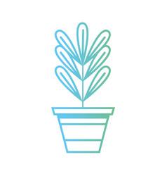 line plant with leaves inside flowerpot design vector image