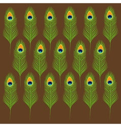 Peacock feather set collection Exotic tropical vector