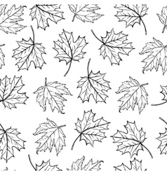 seamless background a lot of maple autumn vector image