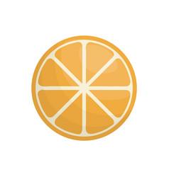 Slice orange fruit healthy vector