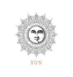 sun hand drawn in engraving style image vector image