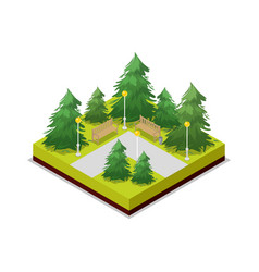 Park road and pine trees isometric 3d icon vector