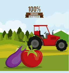 Colorful poster of organic best food with tractor vector