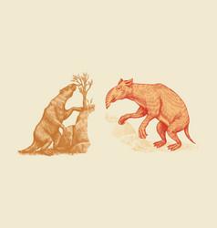 ground sloth or megatheriidae and palorchestes vector image
