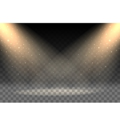 Rays on transparent background vector image vector image