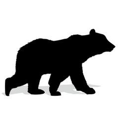 Silhouette of bear vector