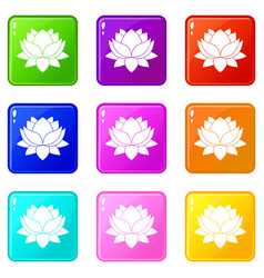 water lily flower icons 9 set vector image