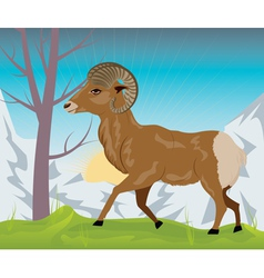 Wild ram in the mountains3 vector