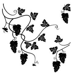 grapes set of few decorative elements vector image vector image