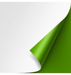 Curled corner of White paper on Green Background vector image