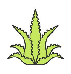 Aloe vera color icon fleshy succulent exotic vector